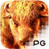 Buffalo Win PG Slot สมัคร